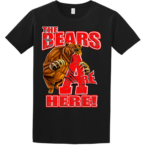 The Bears R Here T