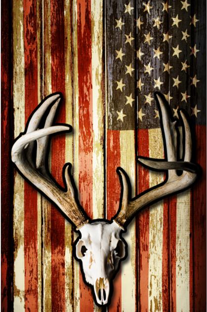 Deer Skull / American Flag