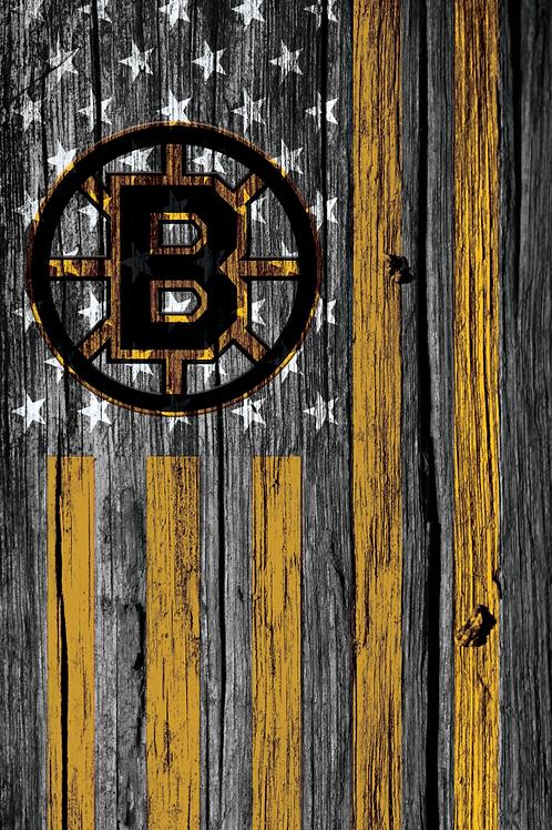 Vintage Old School Bruins Skin