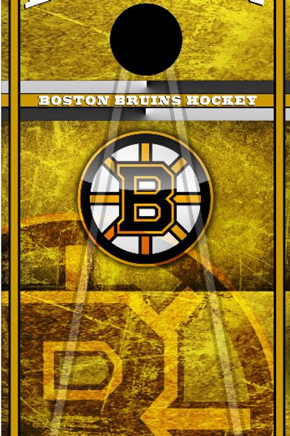 Bruins Ice