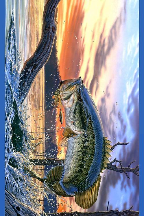 Bass Water Jump