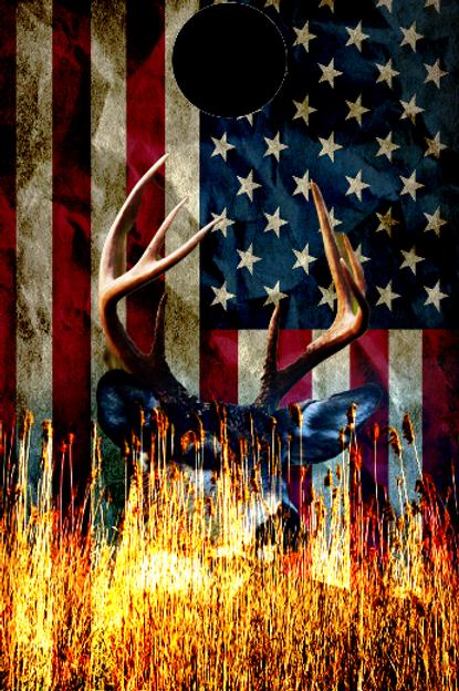 Buck in Woods / Flag