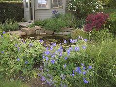 Dorset gardener