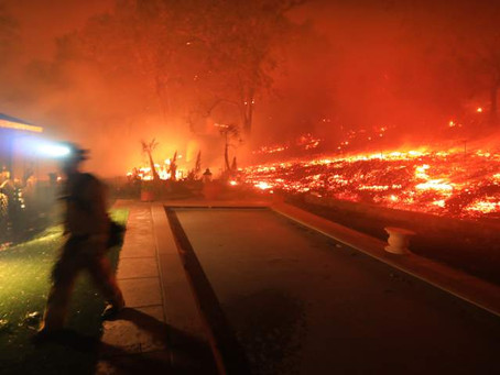 PG&E Paid Off CA Politicians rather than Fix Power Lines