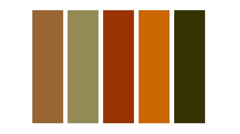 Cíntia Cortez consultora de estilo cores look militarismo