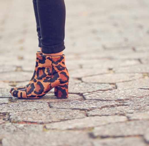 Cintia Cortez _ Animal print sapatos