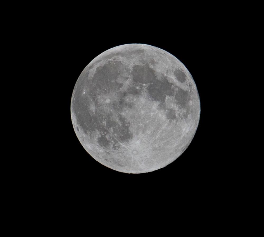 Moon_IMG_3047 copy.jpg