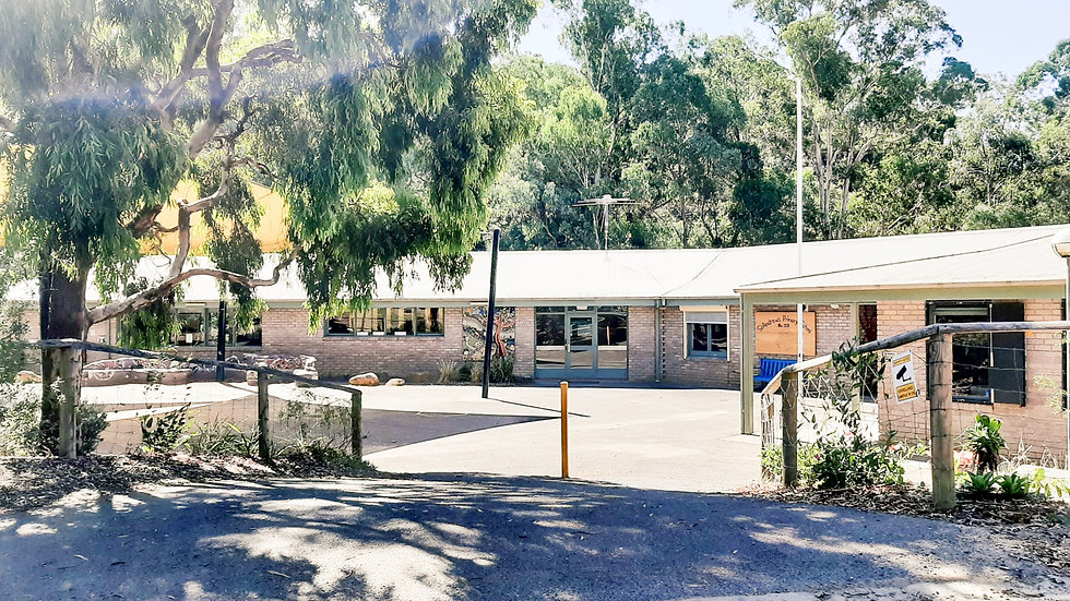 St Andrews Primary School entry.jpg