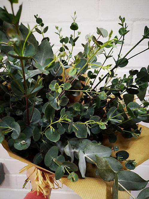 Simply Eucalyptus Bunch