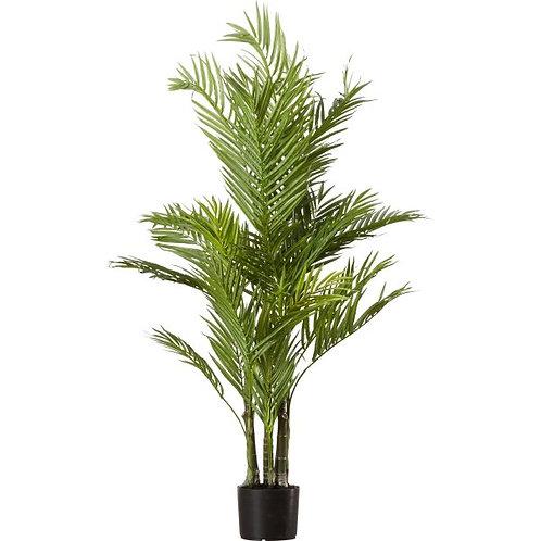 Silk Areca Palm Tree in Pot Rental