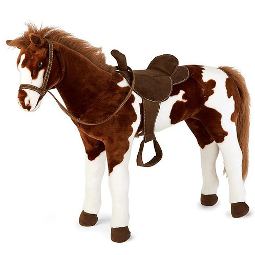 Pinto Horse Rental