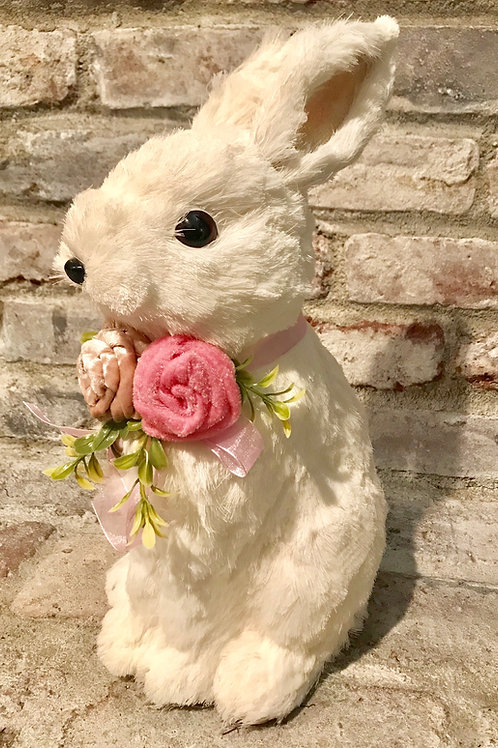 White Rabbit Rental
