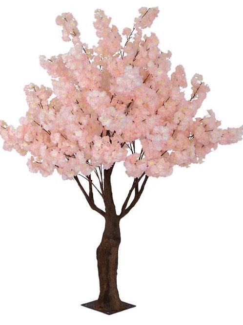 Pink Hydrangea Tree Rental