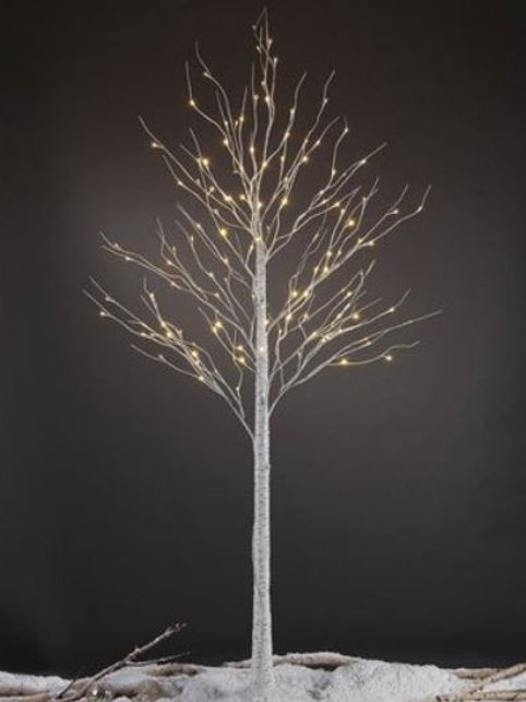 8' Birch Tree with lights rental