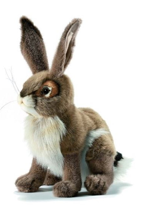 Hansa Black-tailed Jackrabbit Plush Rental