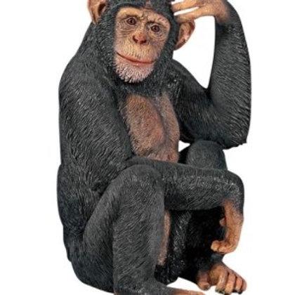 Life-size Chimpanzee Statue Rental