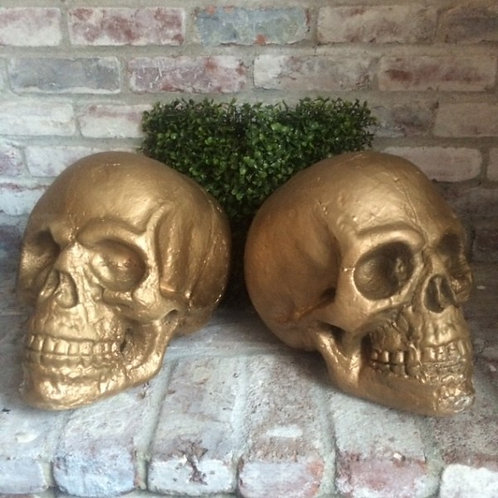 Golden Skulls Rental