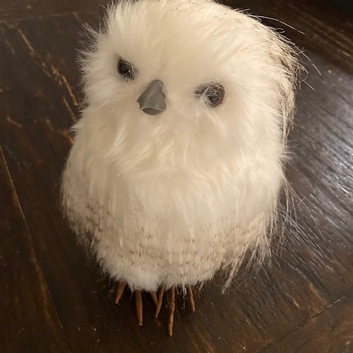 Aspen Owl Rental