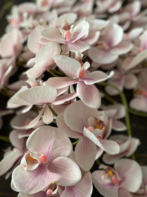 Set of Pink Orchids Rental