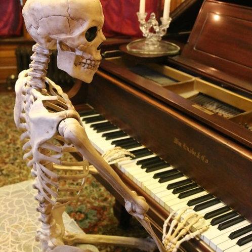 Skeleton Rental