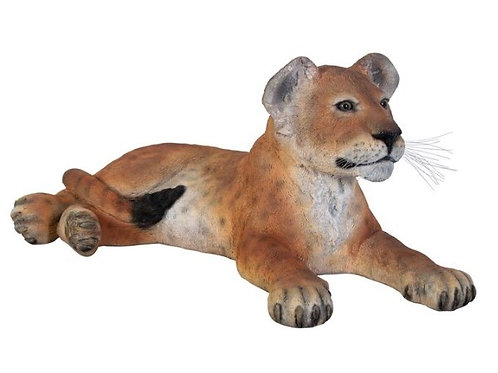 Lying Lion Cub Statue Rental