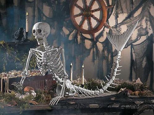 Mermaid Life-Size Skeleton Rental