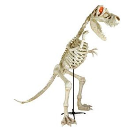 Dinosaur - 9ft T-Rex Rental