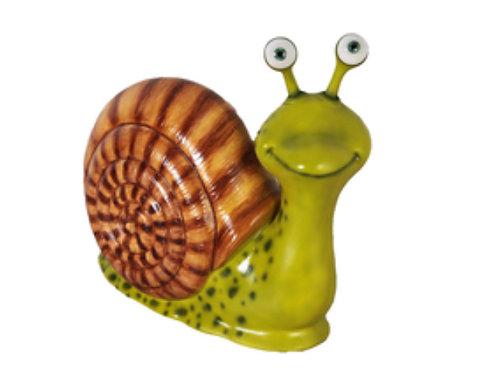 Giant Snail Rental