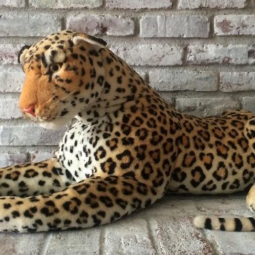 Leopard Plush Rental