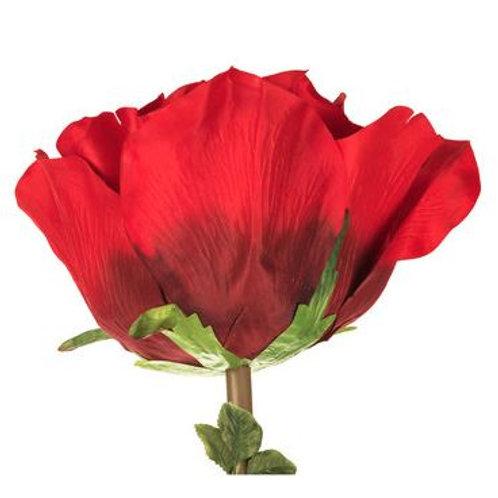 Giant Red Rose Rental