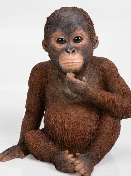 Baby Orangutan Statue Rental