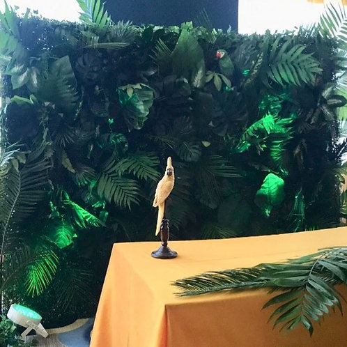 Tropical Backdrop Rental