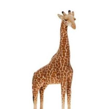 Hansa Giraffe Rental