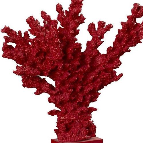 Coral Deep Red - Rental