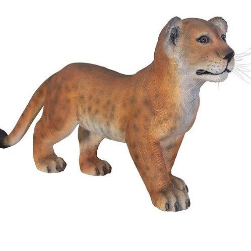 Standing Lion Cub Statue Rental