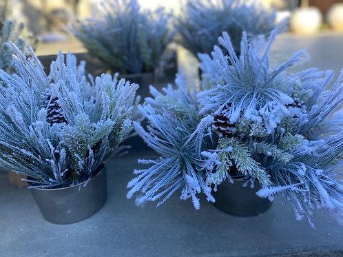 Winter Floral Arrangement Rental