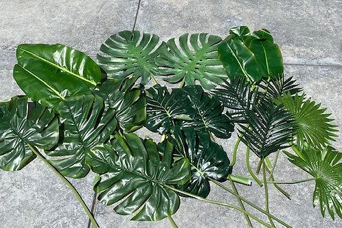 Tropical Set Rental