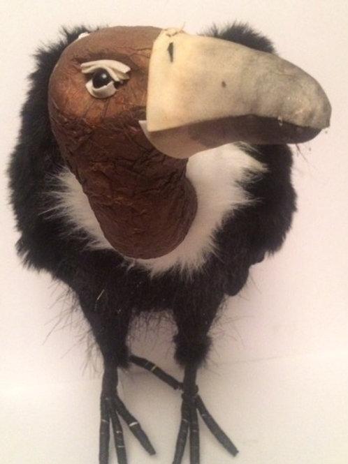 Large Vulture Rental