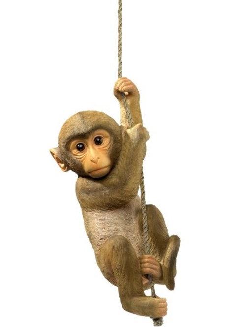Tropical Baby Chimp Statue Rental