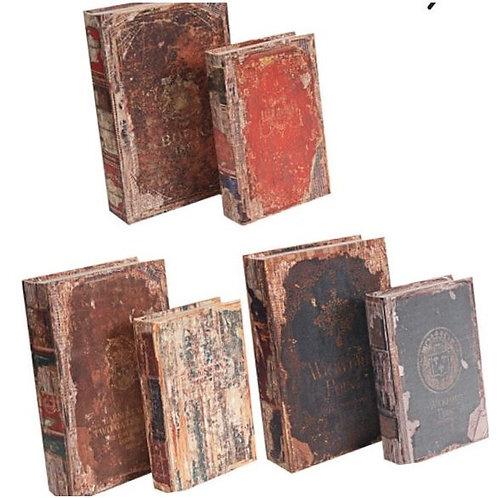 Six Piece Distressed Book Set-Rental