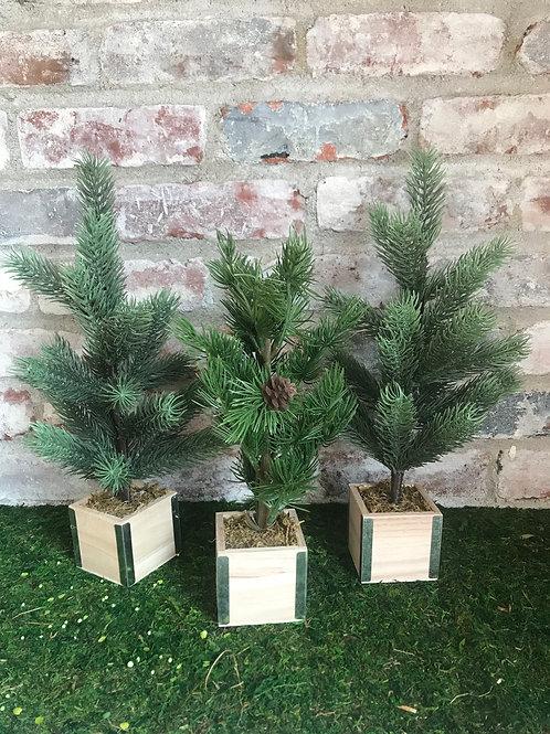 Tabletop Pine Tree Set Rental