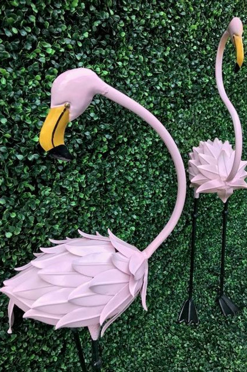 Two Piece Flamingo Set Rental