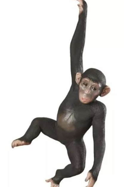 Hanging Jungle Monkey Statue Rental