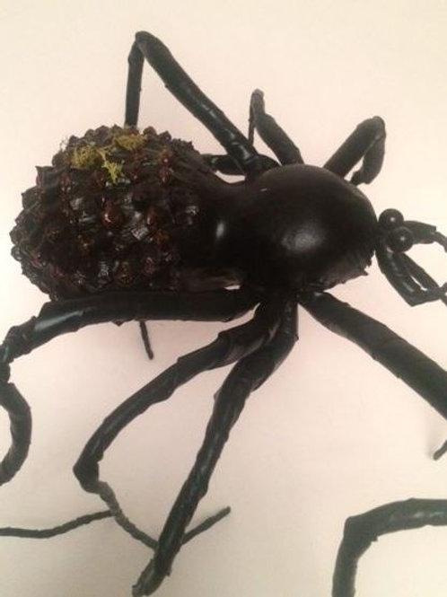 Large Black Spider Rental