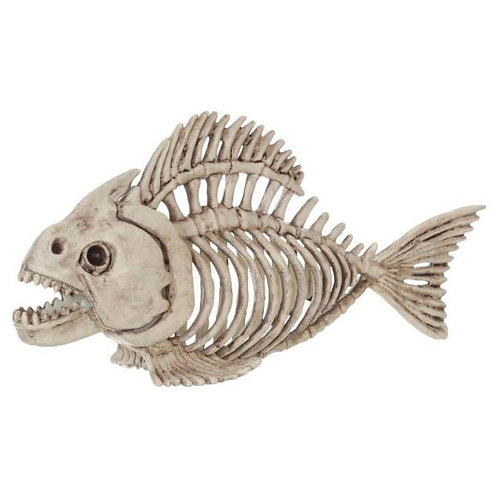 Fish Skeleton Rental