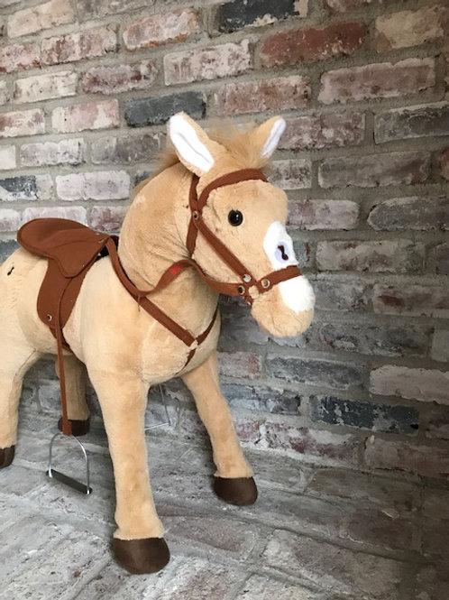 Tan Horse Rental