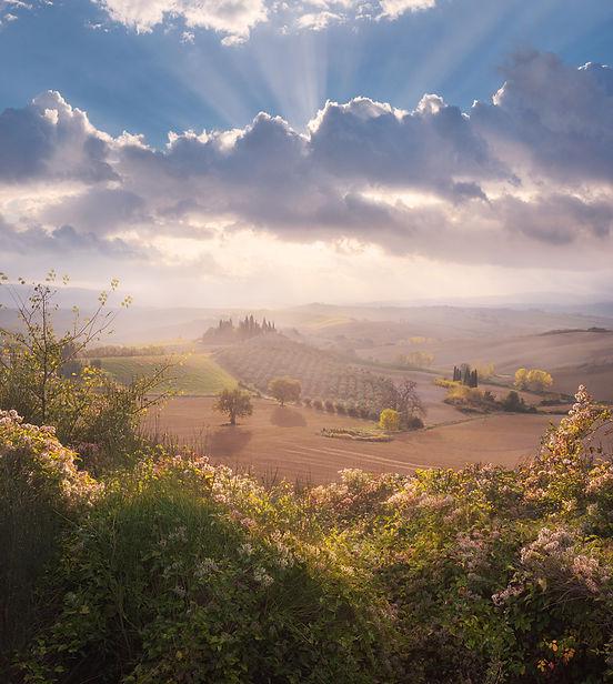Tuscany.jpg