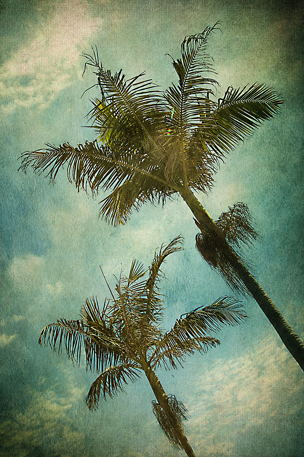 Painted Blue Palms