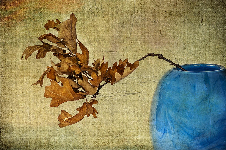 Oak in a blue Vase