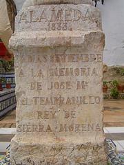 R. del Tempranillo